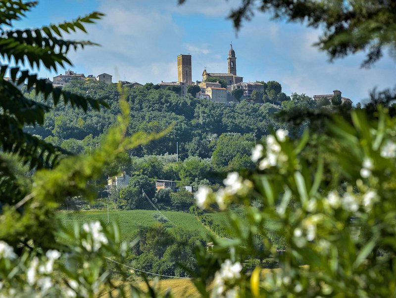 View of Le Marche